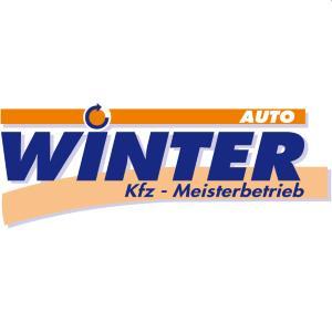 auto-winter-dd